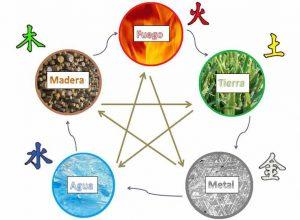 Los-5-elementos
