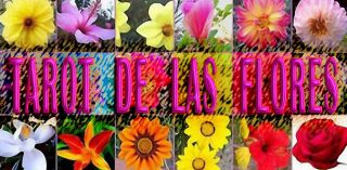 Tarot de las Flores