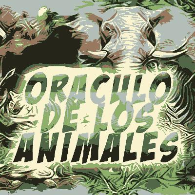 Oráculo Animales